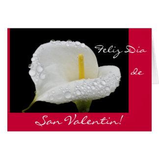 Español: El día de San Valentín/San Valentin Tarjeta De Felicitación