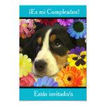 Español: Fiesta de cumpleaños - Invitación