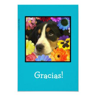 Español: ¡Gracias cardar/Gracias! Invitación 8,9 X 12,7 Cm