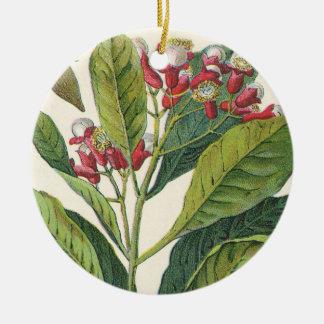 Especias de las hierbas de la comida del vintage ornamentos de navidad