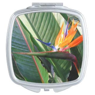Espejo compacto de la ave del paraíso