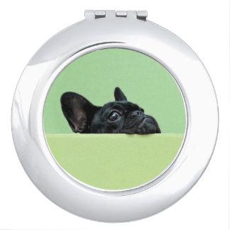 Espejo Compacto Perrito del dogo francés que mira sobre la pared