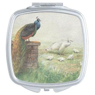 Espejo De Maquillaje Un pavo real y un blanco azules peahen con los