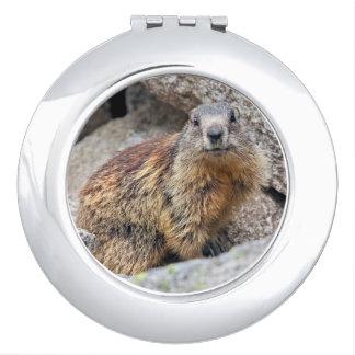 Espejo Para El Bolso Espejo alpino del acuerdo de la marmota
