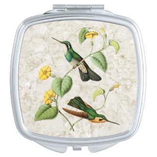 Espejo Throated blanco del acuerdo del colibrí de