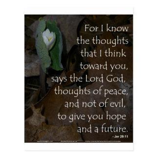 Esperanza del 29:11 de Jeremiah del futuro Postal
