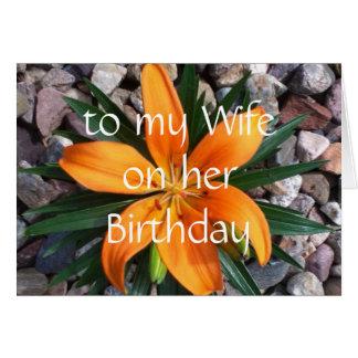 esposa del feliz cumpleaños tarjeta de felicitación