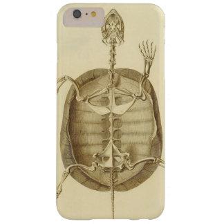 Esqueleto de la tortuga del vintage funda barely there iPhone 6 plus