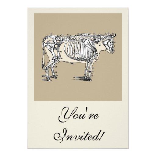Esqueleto de la vaca del vintage comunicados personales