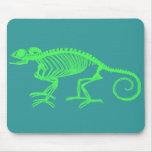Esqueleto del camaleón tapete de raton