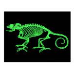 Esqueleto del camaleón tarjetas postales