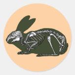 esqueleto del conejo etiquetas redondas