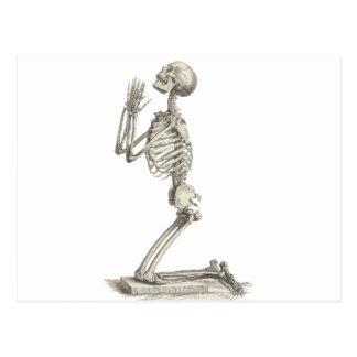 Esqueleto del vintage postal