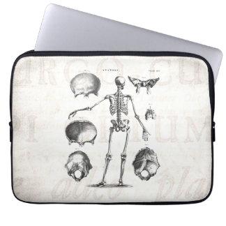 Esqueletos antiguos esqueléticos de la anatomía de funda para ordenador