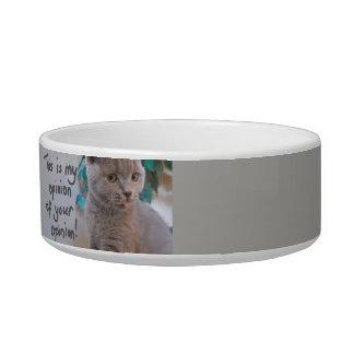 Ésta es mi opinión de su gris del cuenco del gato