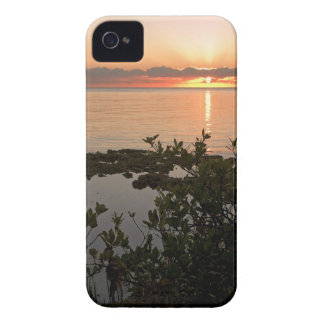Estabilidad en Key Biscayne Carcasa Para iPhone 4 De Case-Mate