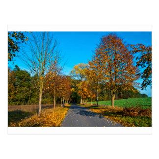 Estado de ánimo de otoño en el octubre Áureo Postal