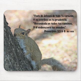 Estafa Ardilla del 3 5 6 de Proverbios Tapete De Ratón