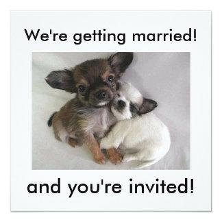 ¡Estamos consiguiendo casados! ¡, y le invitan! Invitación 13,3 Cm X 13,3cm