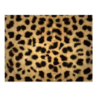 Estampado de animales de Jaguar Postal