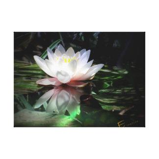 Estampado de flores de Lotus Lona Envuelta Para Galerías