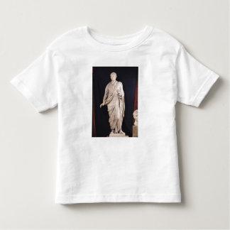 Estatua de César Augustus Camisas