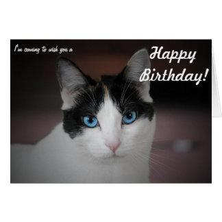 ¡Este gato whishes un feliz cumpleaños! Tarjeton
