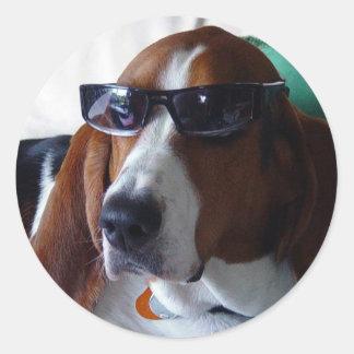 Este perro de caza es un kool kat pegatina redonda