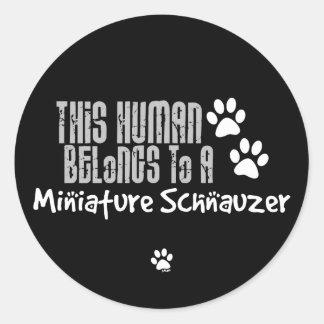 Este ser humano pertenece a un Schnauzer miniatura Etiquetas