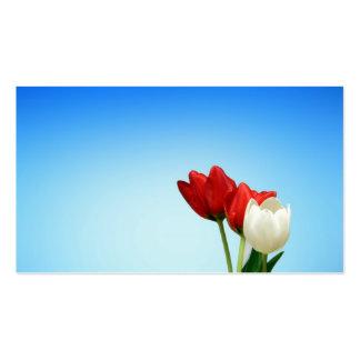 Estética blanca roja de la primavera de los tarjetas de visita