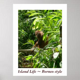 Estilo de Borneo del ~ de la vida de la isla Póster