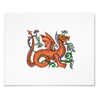 Estilo de lujo dragon.png fotografías