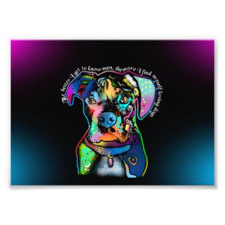 Estilo del arte pop del perro del boxeador para impresion fotografica
