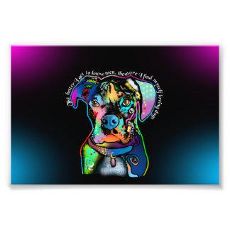 Estilo del arte pop del perro del boxeador para fotos