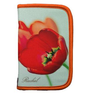 Estilo floral del bokeh de la verde menta del tuli organizador
