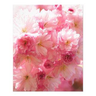 Estilo rosado de la flor de cerezo folleto 11,4 x 14,2 cm