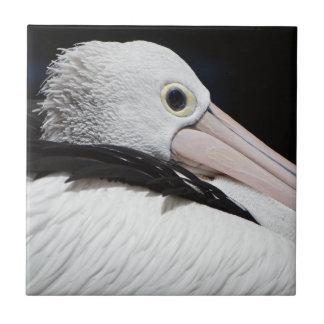 Estimado Pelican Azulejo Cuadrado Pequeño