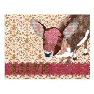 Estimado rosa de los ciervos y postal del damasco