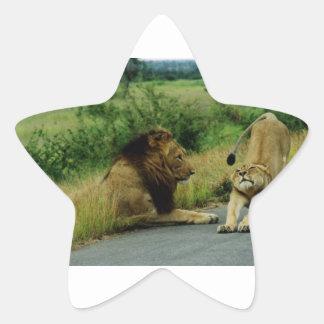Estiramiento de la leona pegatina en forma de estrella