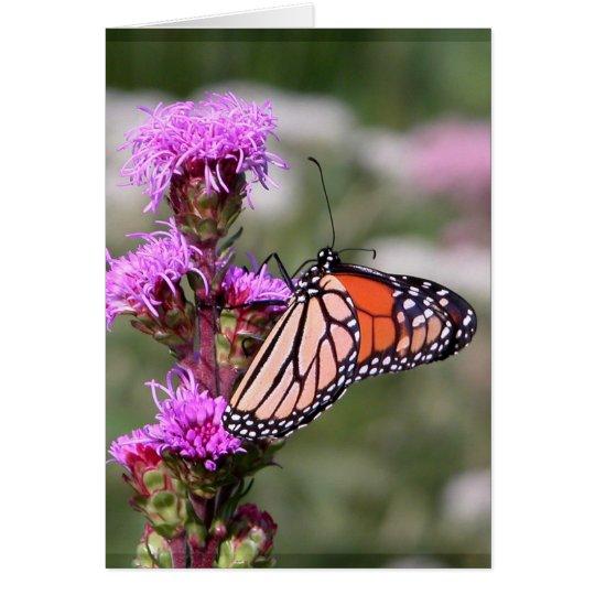 Estrella ardiente y mariposa de monarca tarjeta de felicitación