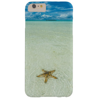 Estrella de mar en el agua poco profunda, Palau Funda Barely There iPhone 6 Plus