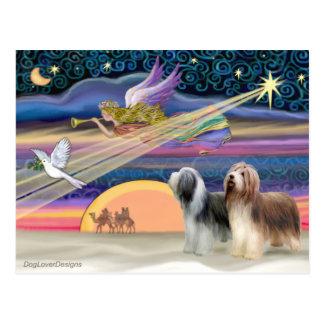 Estrella del navidad - collies barbudos (dos) postal