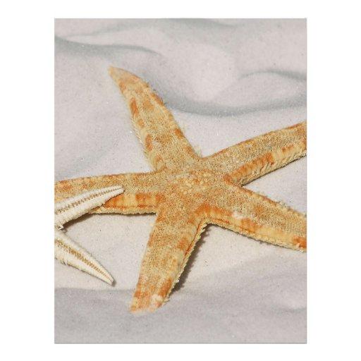 Estrellas de mar tarjetas informativas