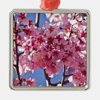 Estrellas del rojo de las flores de cerezo de adorno navideño cuadrado de metal