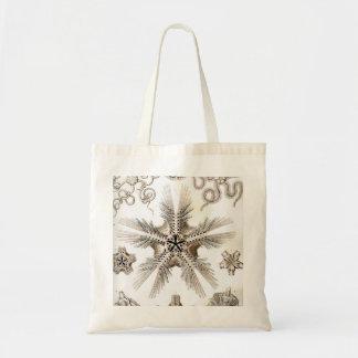 Estrellas frágiles de Ernst Haeckel Ophiodea Bolso De Tela