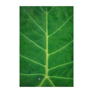 Estructura frondosa verde lienzo