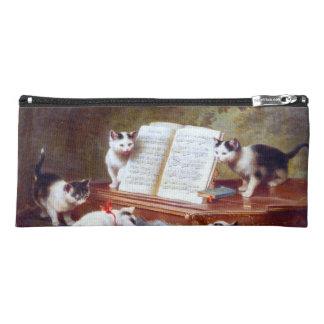 Estuche Gatitos en las llaves