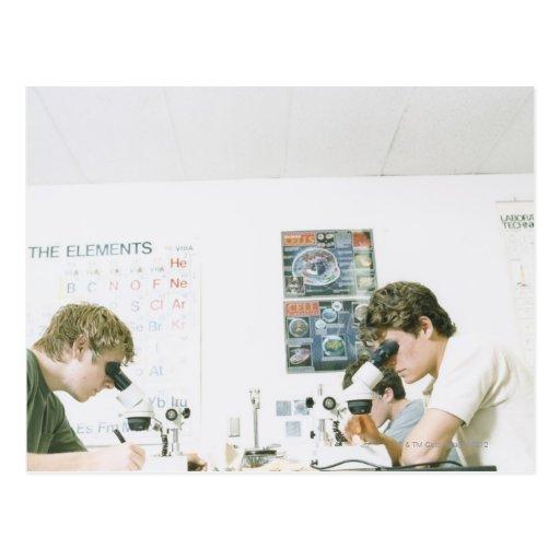 Estudiantes con los microscopios postal