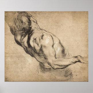 Estudio del torso del hombre de Paul Rubens Póster