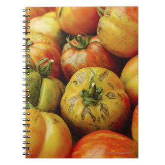 Estudio tirado de los tomates de la herencia libros de apuntes con espiral